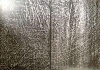 Graphite on stone paper.